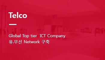 Telco - Global Top tier  ICT Company 유.무선 Network 구축